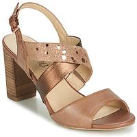 Chaussures Femme Sandales et Nu-pieds Caprice BOLAO Marron