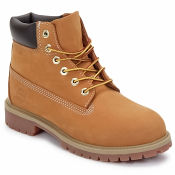Chaussures Enfant Boots Timberland 6 IN PREMIUM WP BOOT Marron