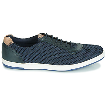 Baskets basses Base London HUSTLE MESH
