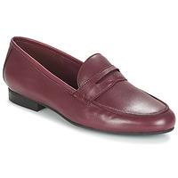 Chaussures Femme Mocassins André TIM BORDEAUX