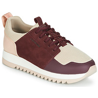 Chaussures Femme Baskets basses G-Star Raw DELINE WMN Rose / Bordeaux