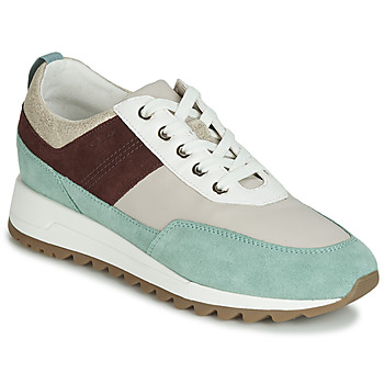 Chaussures Femme Baskets basses Geox D TABELYA Beige / Marron / Vert