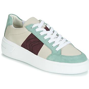 Chaussures Femme Baskets basses Geox D OTTAYA Crème / Vert