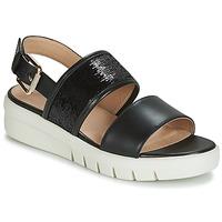 Chaussures Femme Sandales et Nu-pieds Geox D WIMBLEY SANDAL Noir