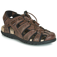 Chaussures Homme Sandales sport Geox UOMO SANDAL STRADA Marron