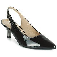 Chaussures Femme Escarpins Dorking 7814 Noir