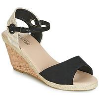 Chaussures Femme Sandales et Nu-pieds Spot on F2265 Noir