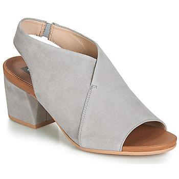 Chaussures Femme Sandales et Nu-pieds Wonders FILETI Taupe