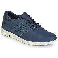 Chaussures Homme Baskets basses Timberland BRADSTREET F/L OXFORD Bleu