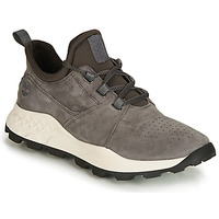 Chaussures Homme Baskets basses Timberland BROOKLYN LACE OXFORD Gris