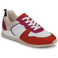 Chaussures Femme Baskets basses André ADO Multicolore