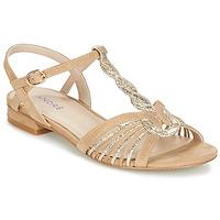 Chaussures Femme Sandales et Nu-pieds André CALLISTO Beige / Doré