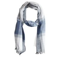 Accessoires textile Homme Echarpes / Etoles / Foulards André FLIP Bleu