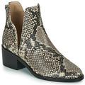 Chaussures Femme Boots Steve Madden