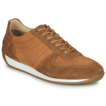 Chaussures Homme Baskets basses Casual Attitude LARY Camel