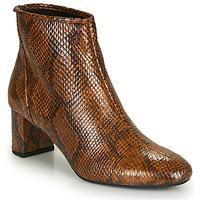 Chaussures Femme Bottines André LEADERS Marron
