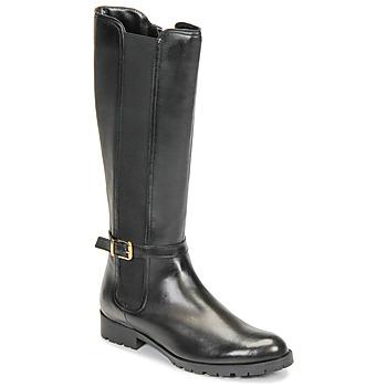 Chaussures Femme Bottes ville André ELODIE Noir