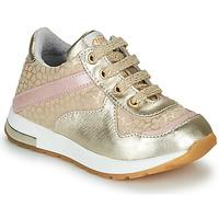 Chaussures Fille Baskets basses GBB LELIA Doré / Beige