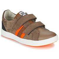 Chaussures Garçon Baskets basses GBB AVEDON Marron