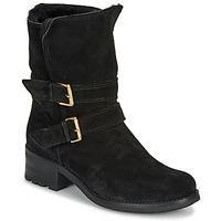 Chaussures Femme Boots André MAJOLIE Noir