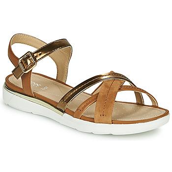 Chaussures Femme Sandales et Nu-pieds Geox D SANDAL HIVER Doré / Marron