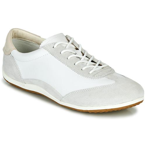 Chaussures Femme Baskets basses Geox D VEGA Blanc / Gris