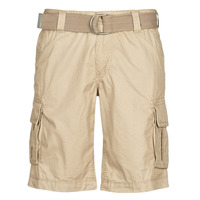Vêtements Homme Shorts / Bermudas Teddy Smith SYTRO 3 Beige