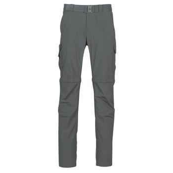 Vêtements Homme Pantalons cargo Columbia SILVER RIDGE II CONVERTI Gris