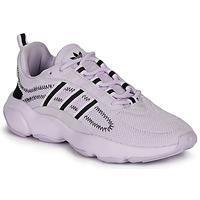 Chaussures Femme Baskets basses adidas Originals HAIWEE W Mauve