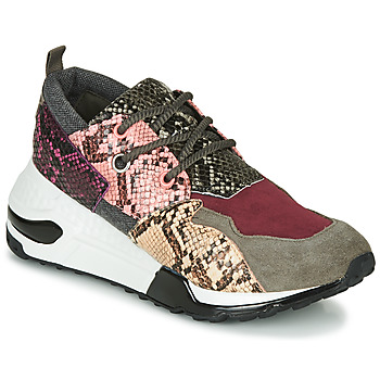 Chaussures Femme Baskets basses Steve Madden CLIFF Multicolore