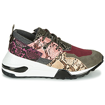 Baskets basses Steve Madden CLIFF
