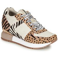 Chaussures Femme Baskets basses Gioseppo BIKANER Beige / Marron