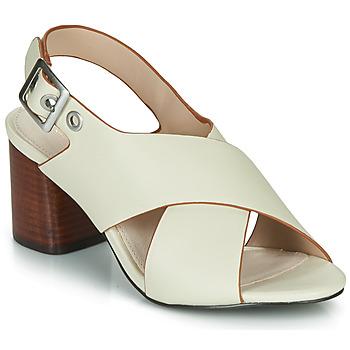 Chaussures Femme Sandales et Nu-pieds André JANNINE Beige