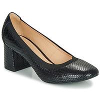 Chaussures Femme Escarpins André LAYA NOIR MOTIF
