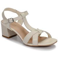 Chaussures Femme Sandales et Nu-pieds André JOSEPHINE Blanc
