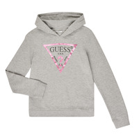 Vêtements Fille Sweats Guess GREGOR Gris