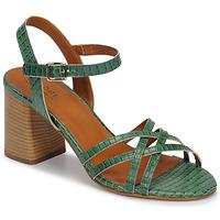 Chaussures Femme Sandales et Nu-pieds André BRYNN Vert