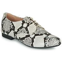 Chaussures Femme Derbies André COMPLICITY Beige