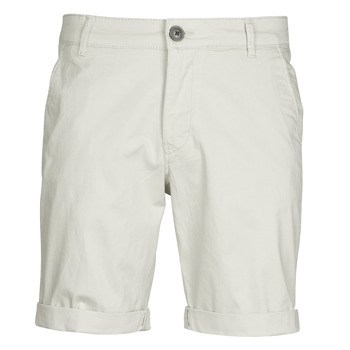 Vêtements Homme Shorts / Bermudas Selected SLHPARIS Beige