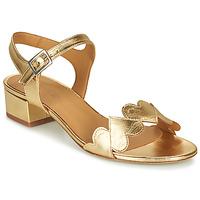 Chaussures Femme Sandales et Nu-pieds Emma Go POPPY Doré