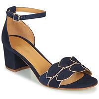 Chaussures Femme Sandales et Nu-pieds Emma Go ZOE Marine