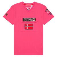 Vêtements Garçon T-shirts manches courtes Geographical Norway JIRI Rose