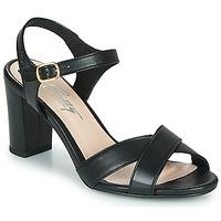 Chaussures Femme Sandales et Nu-pieds Betty London MOUDINE Noir