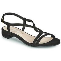 Chaussures Femme Sandales et Nu-pieds Betty London MATISSO Noir