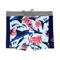 Vêtements Garçon Maillots / Shorts de bain Petit Bateau FEUILLAGE Multicolore