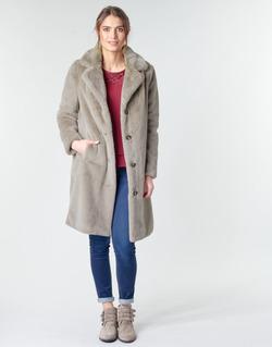 Vêtements Femme Manteaux Oakwood CYBER Taupe