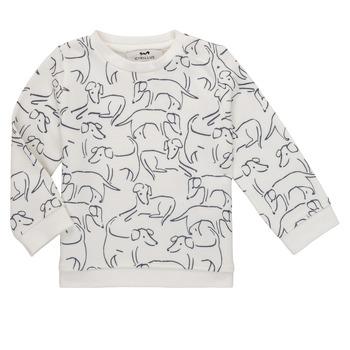 Vêtements Garçon Sweats Cyrillus EDUARDO Blanc