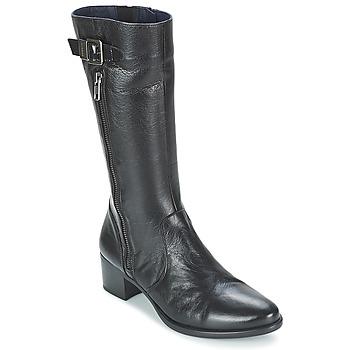 Chaussures Femme Boots Dorking LOLETA Noir