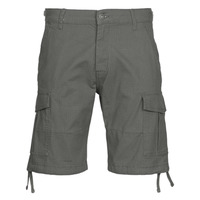 Vêtements Homme Shorts / Bermudas Jack & Jones JJIALFA Gris