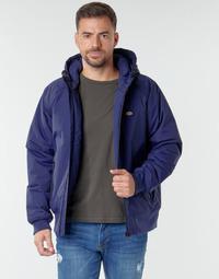 Vêtements Homme Blousons Dickies SARPY Bleu
